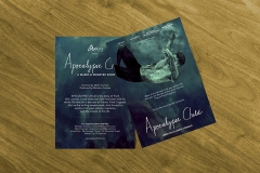 flyers for Udine Film Festival
